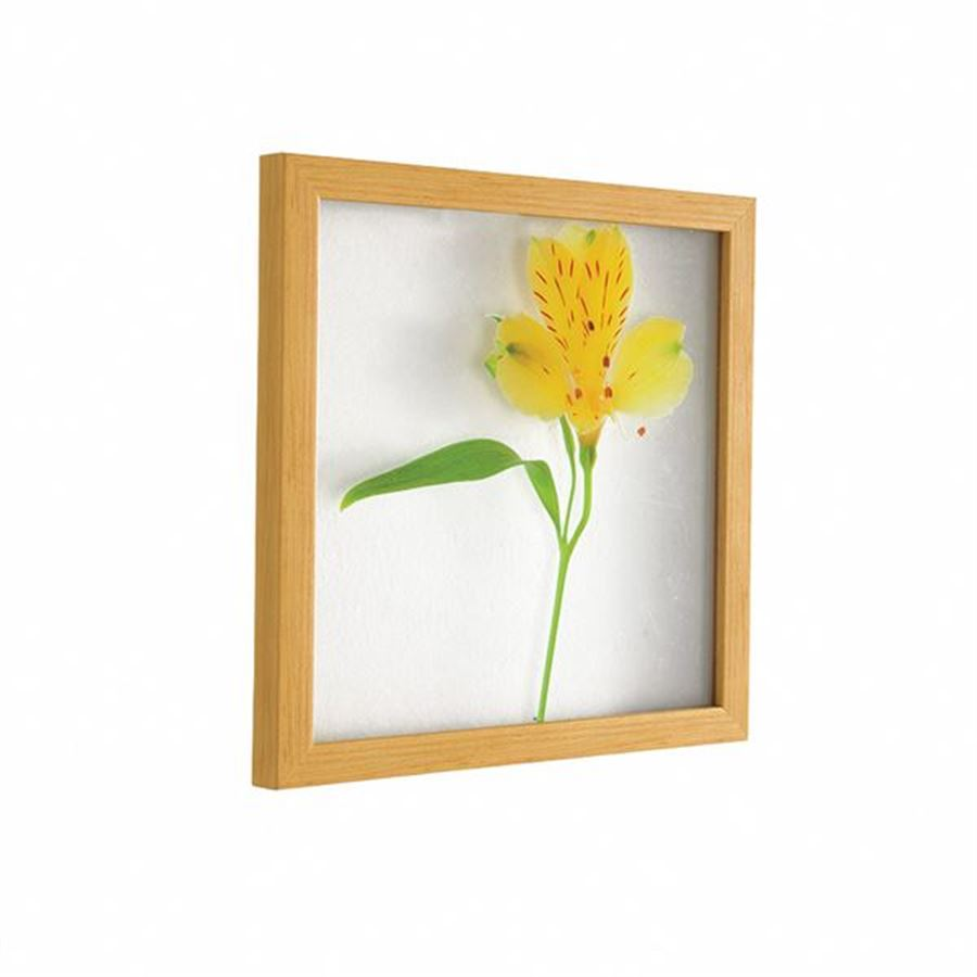 Çerçeveli Sarı Çiçek Pano