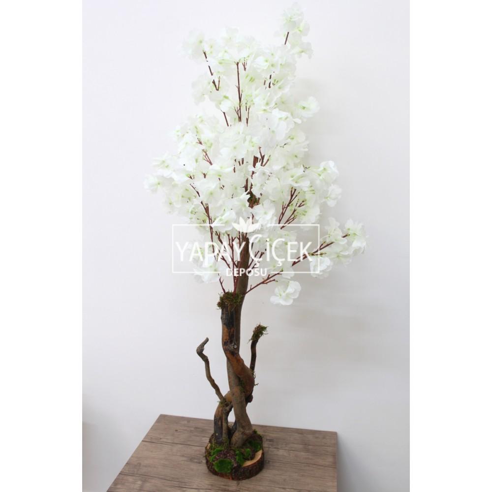 Bahar Dalı Ağacı